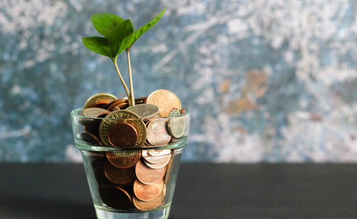 Plant growing from a glass of coins representing PensionSync's product development for customers
