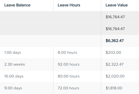 Leave balances report (zoomed in)
