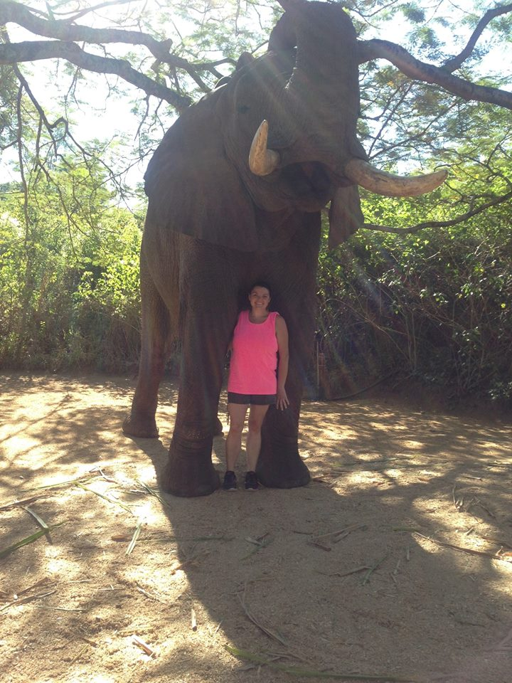 Erica DVM standing in front of an elephant