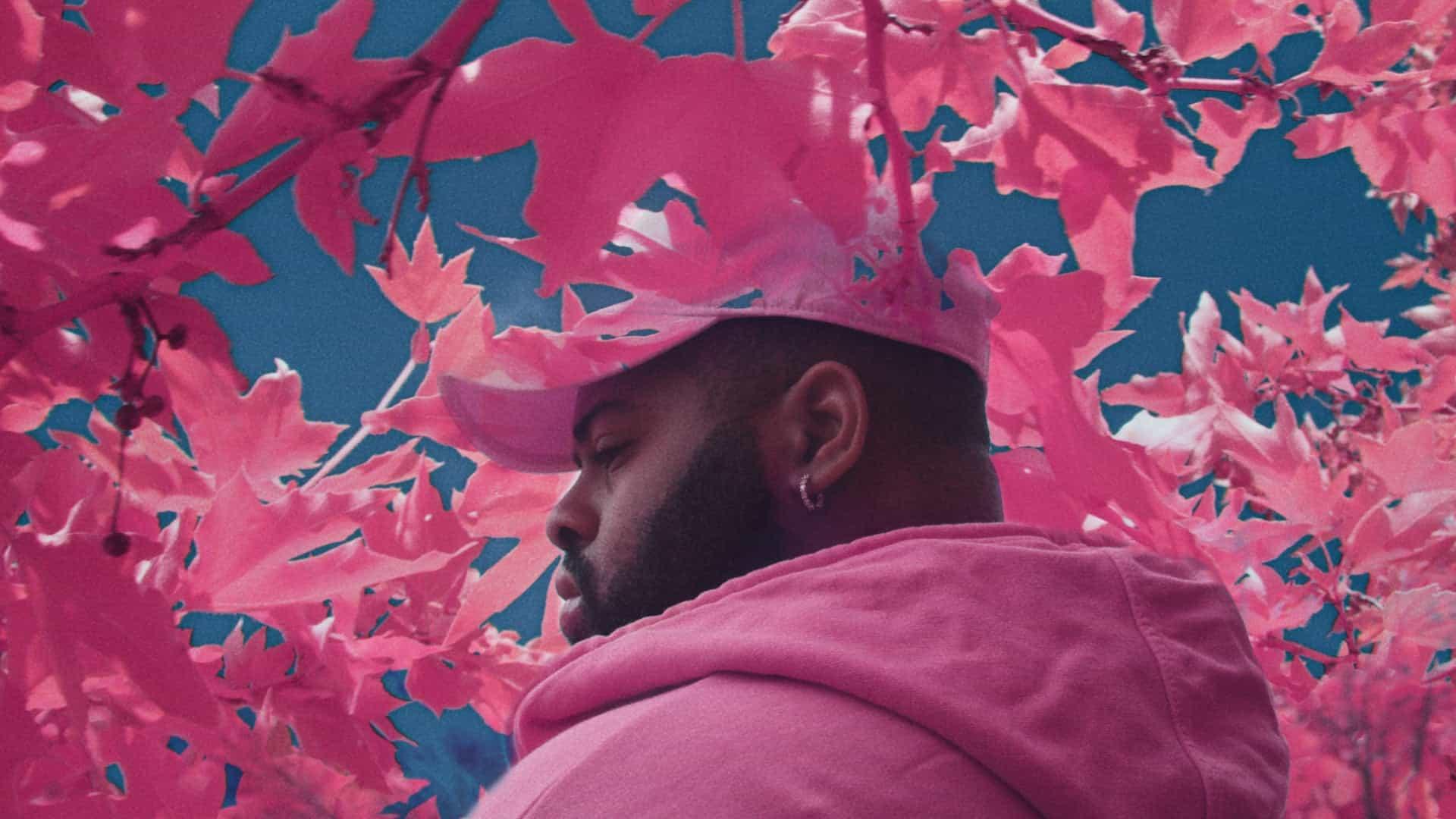 Pabst Blue Ribbon ft. Pink Sweats