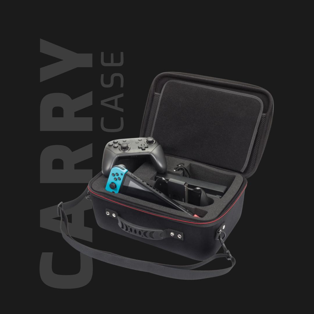 Nintendo Carry Case