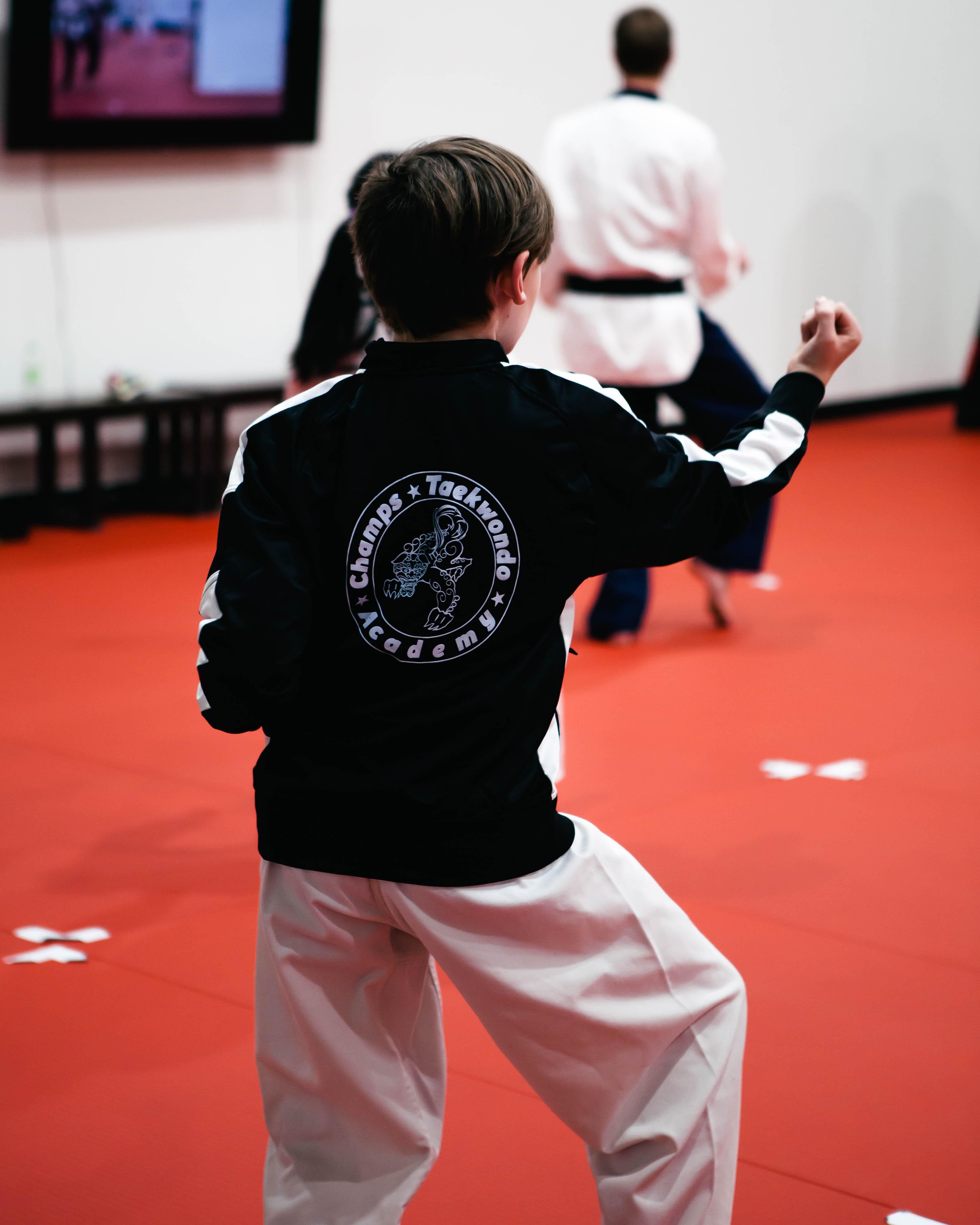 Kid learning Taekwondo