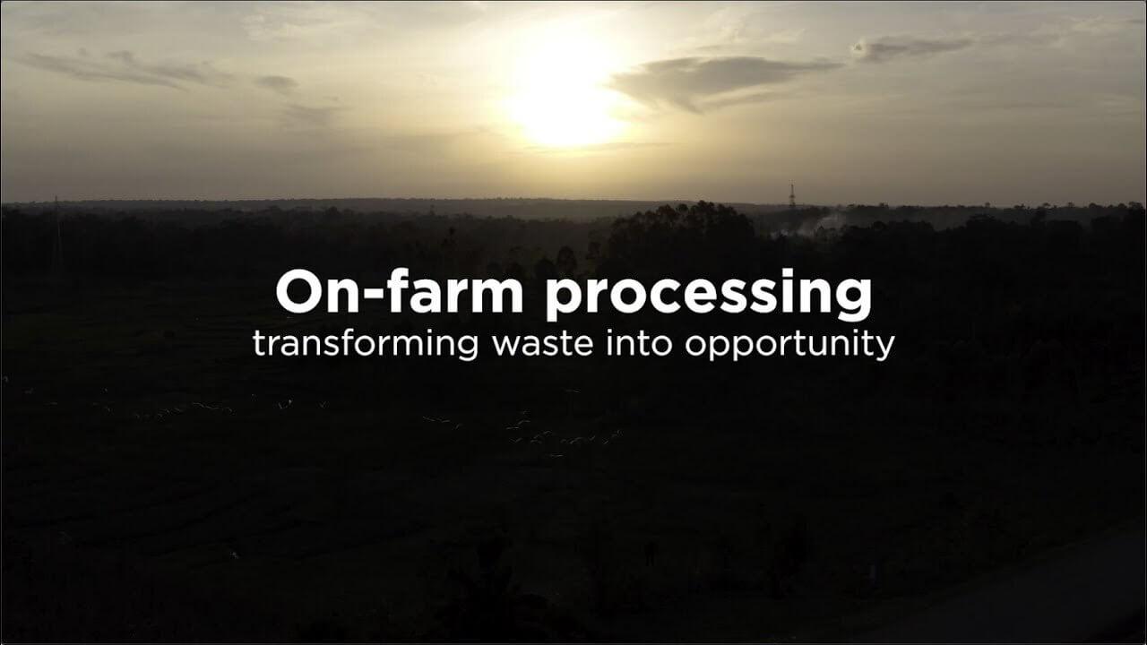 Reducing food losses through on-farm processing