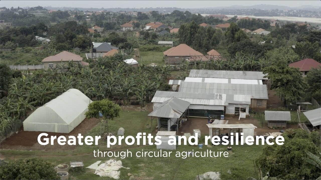 How to run a profitable small farm