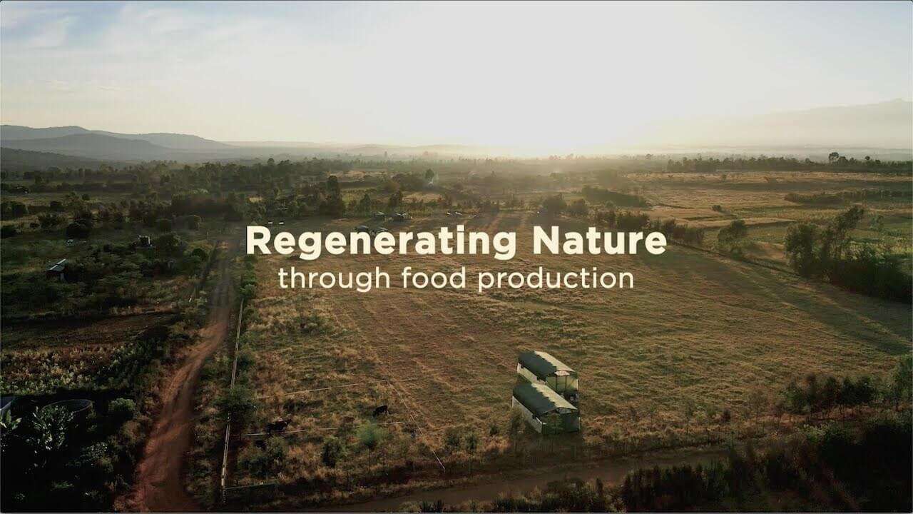 Regenerative Farming in Kenya