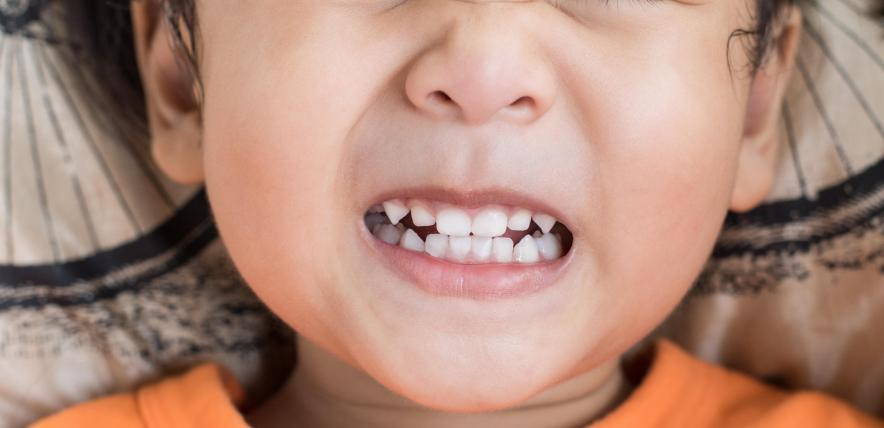 Biting: The Care for Kindies Response
