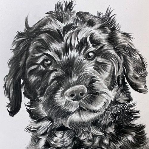 Houtskooltekening van schattig hondje