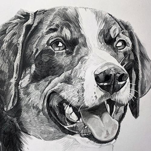 Grafiet tekening van een vrolijke hond in A4
