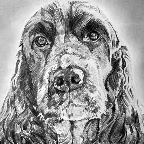 Grafiettekening hond Google en konijntje Lewis A4