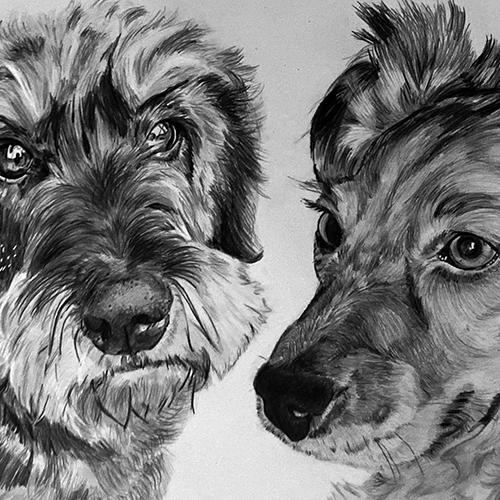 Lobke en Charlie hondenportrettekening A4 grafiet