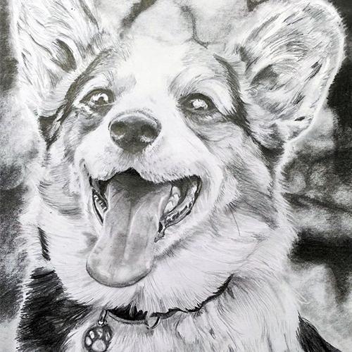 Vrolijke Corgi hondentekening A4