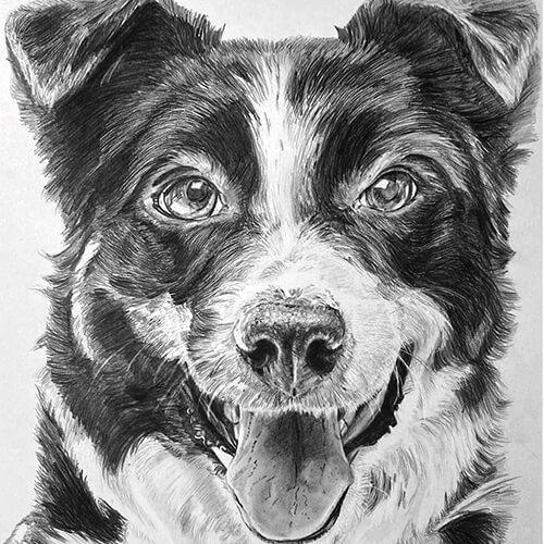 Hondje zwart wit tekening