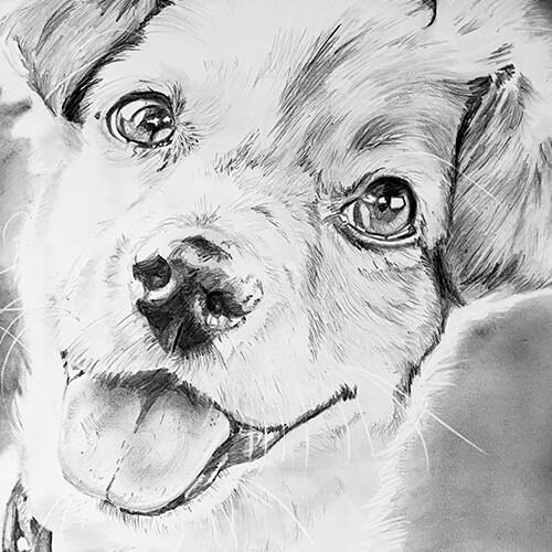 Vrolijk hondje tekening A4
