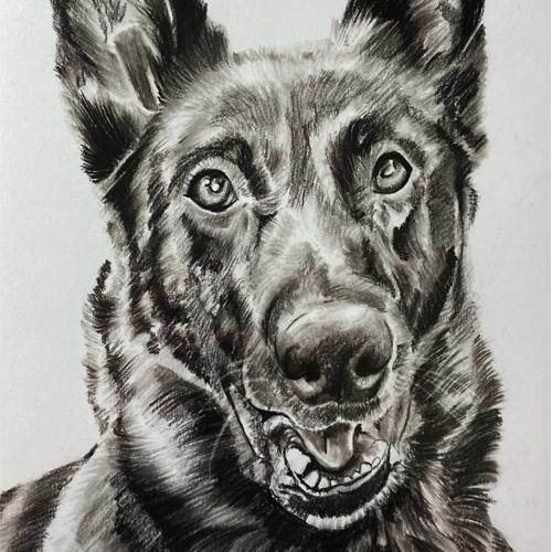 Houtskool tekening herdershond hondentekening A4