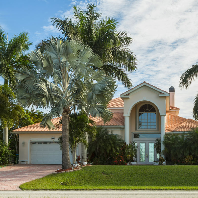 Beautiful well maintained palm trees of a residence in Parrish, FL.