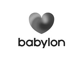 Babylon Pay Check