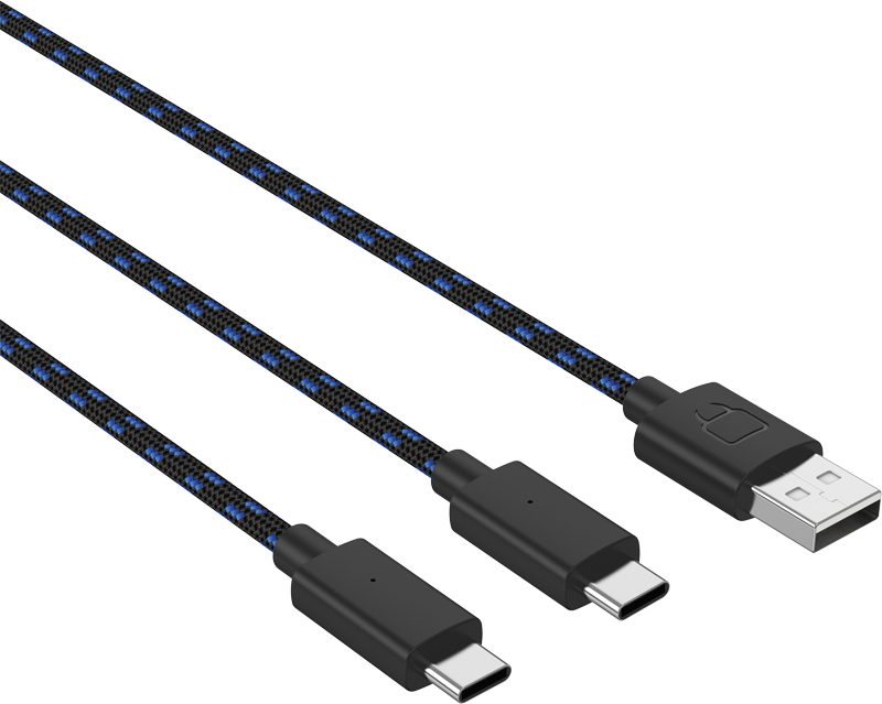 DUAL PLAY & CHARGE CABLE