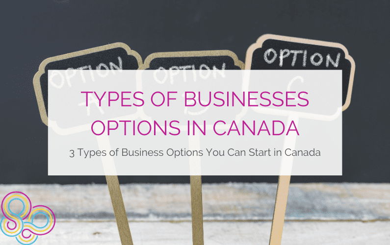 Types of Businesses Options in Canada: 3 Types of Business Options You Can Start in Canada
