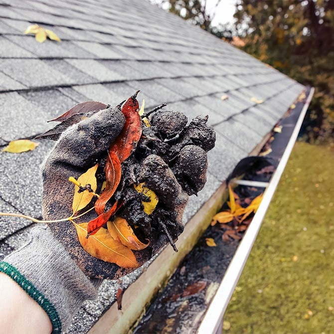 Gutter cleaning in the Greater Houston area