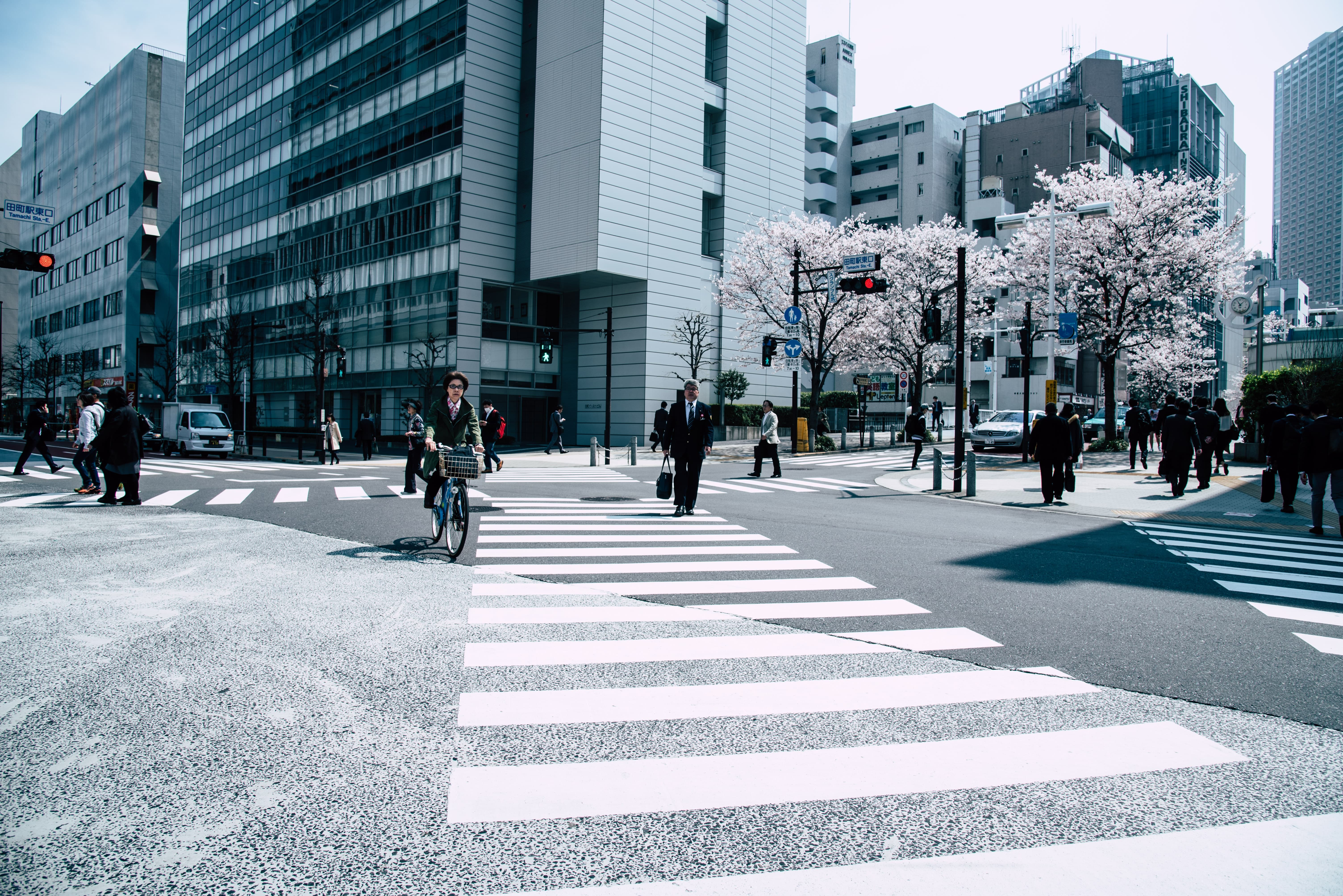 Pedestrians walking across a cross walk