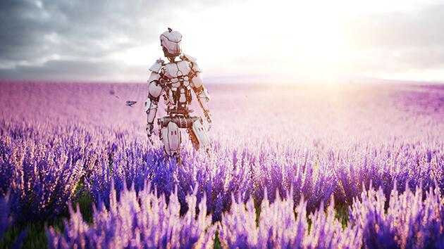 Robot in a field.