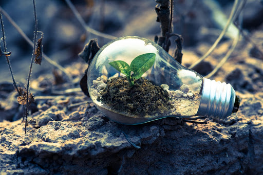 Green Property Management: 9 Best Practices for Eco-Friendly Property Management