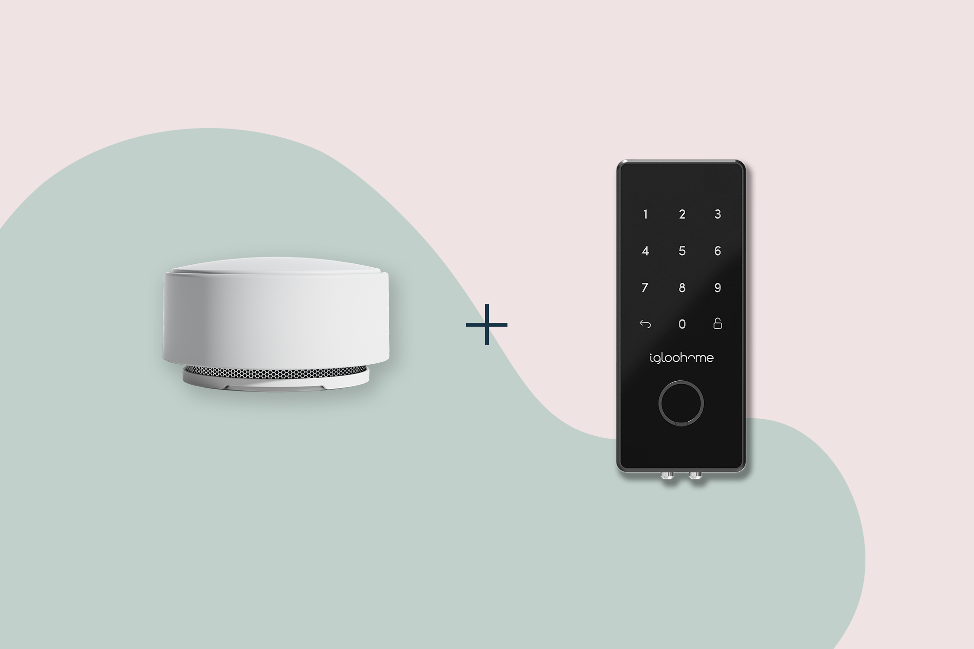 Minut sensor and igloohome smart lock