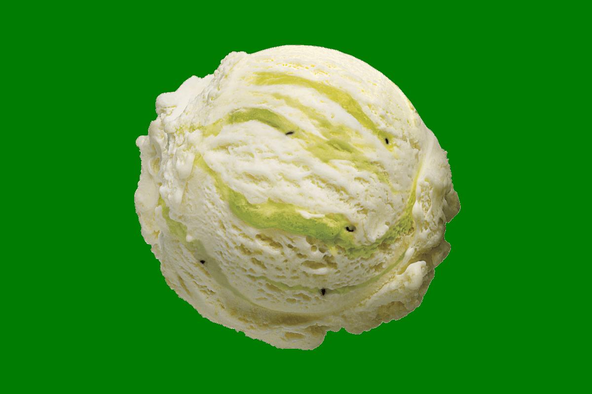Kiwifruit Pavlova