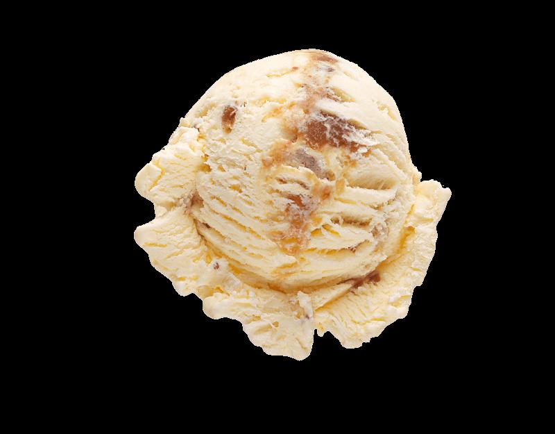 Kāpiti Fig & Manuka Honey Ice Cream
