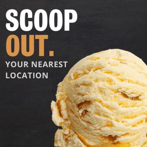 https://kapiti-icecream.webflow.io/scoops-and-tubs/kapiti-hokey-pokey-ice-cream