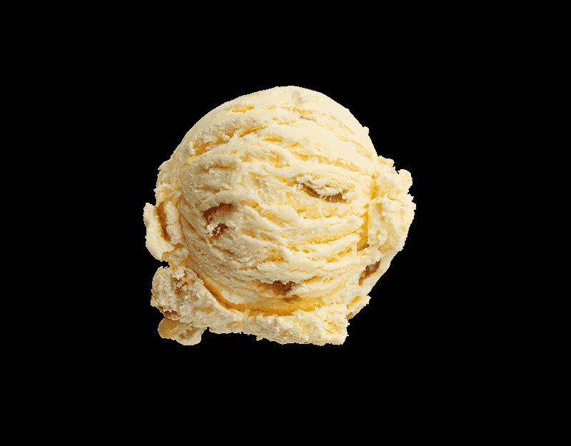 Kāpiti Hokey Pokey Ice Cream