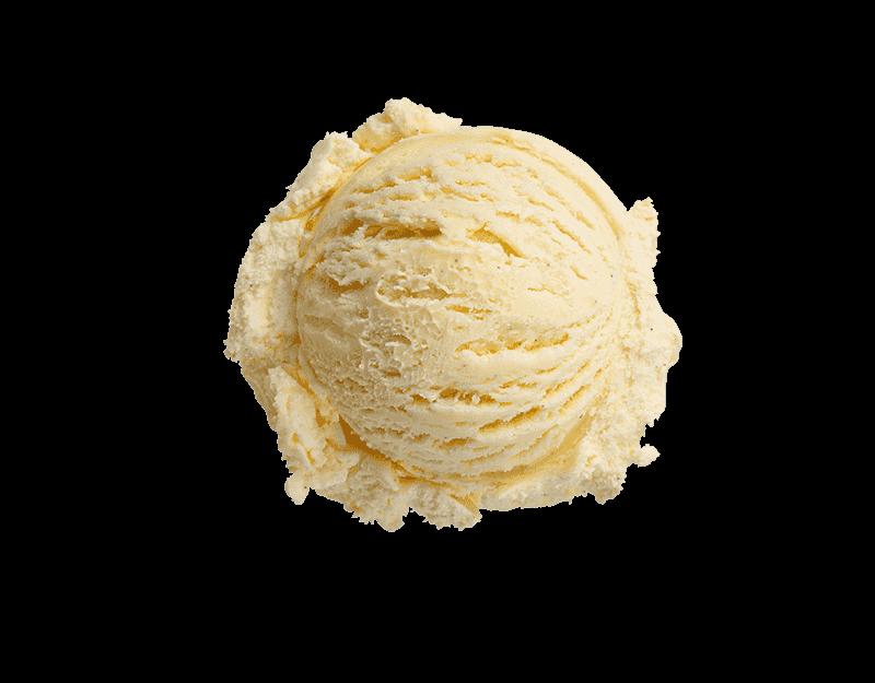 Kāpiti Vanilla Bean Ice Cream