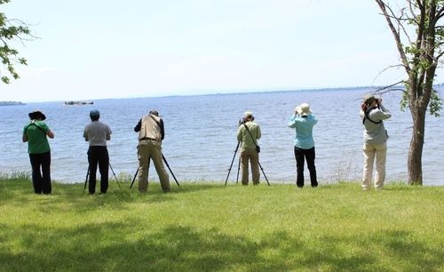 group looking out over water