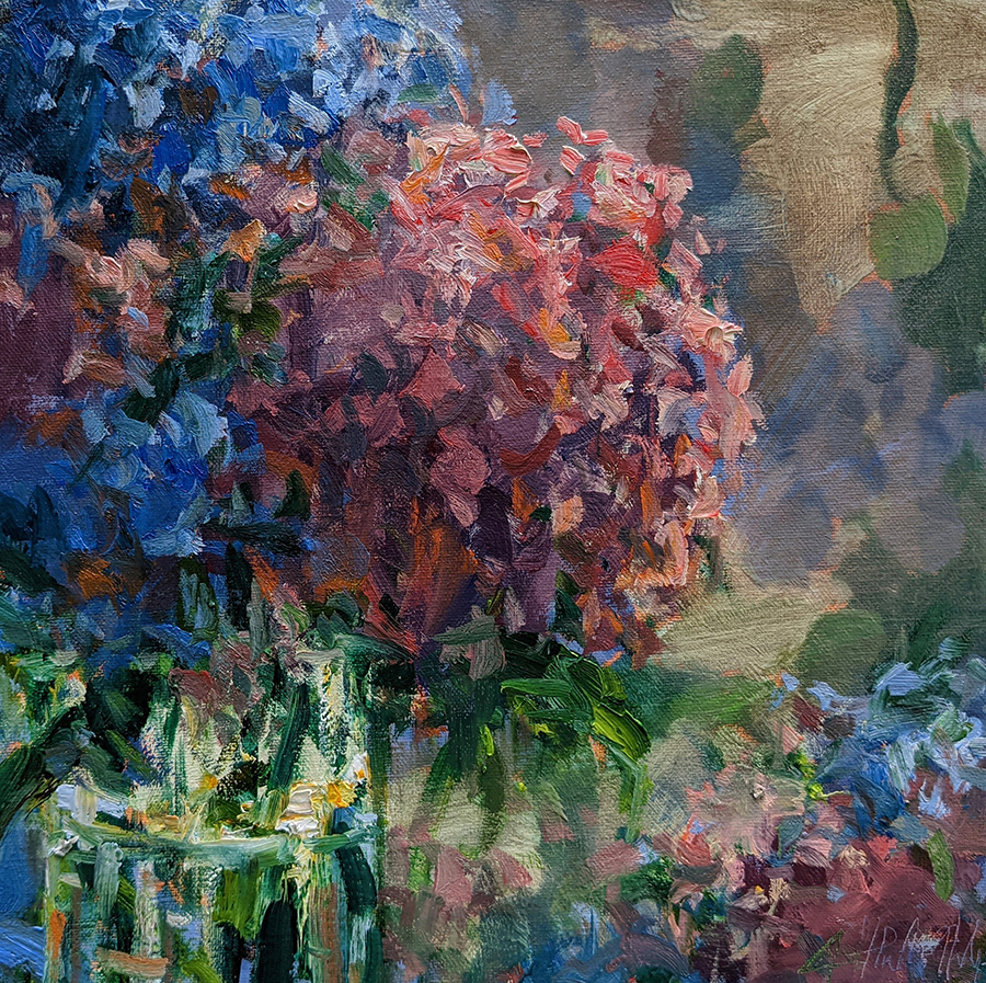 Blue and red hydrangeas