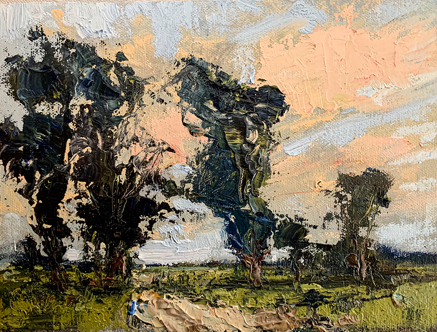trees sunset marsh