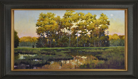 Colorful gold leafed trees reflecting in marsh below.
