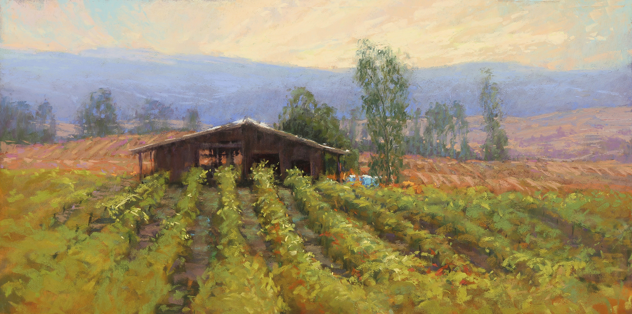 Painting of Napa Valley vineyard.