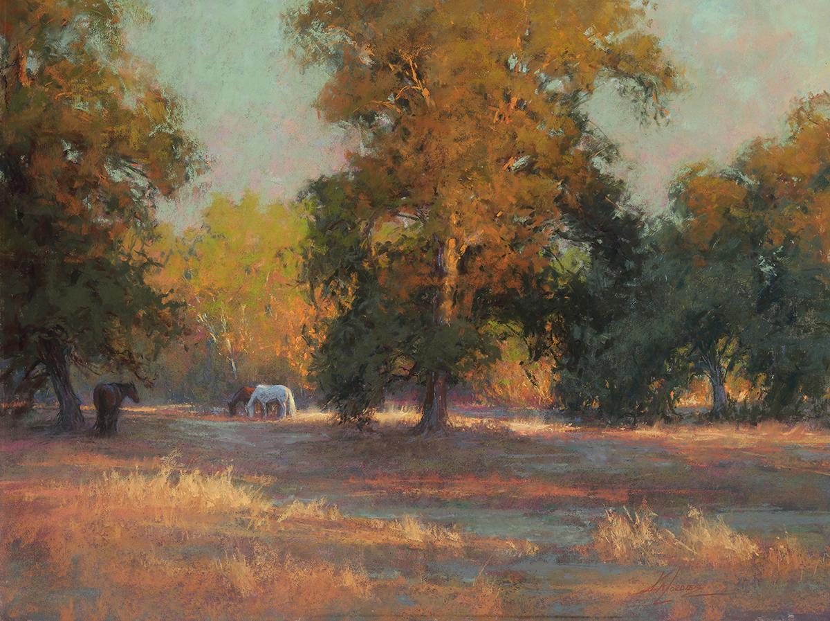 Horses grazing amid oak trees at sundown