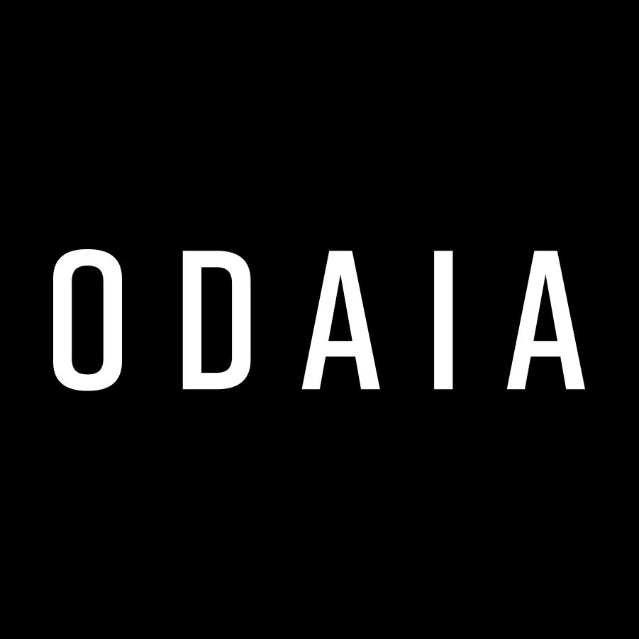 ODAIA Team
