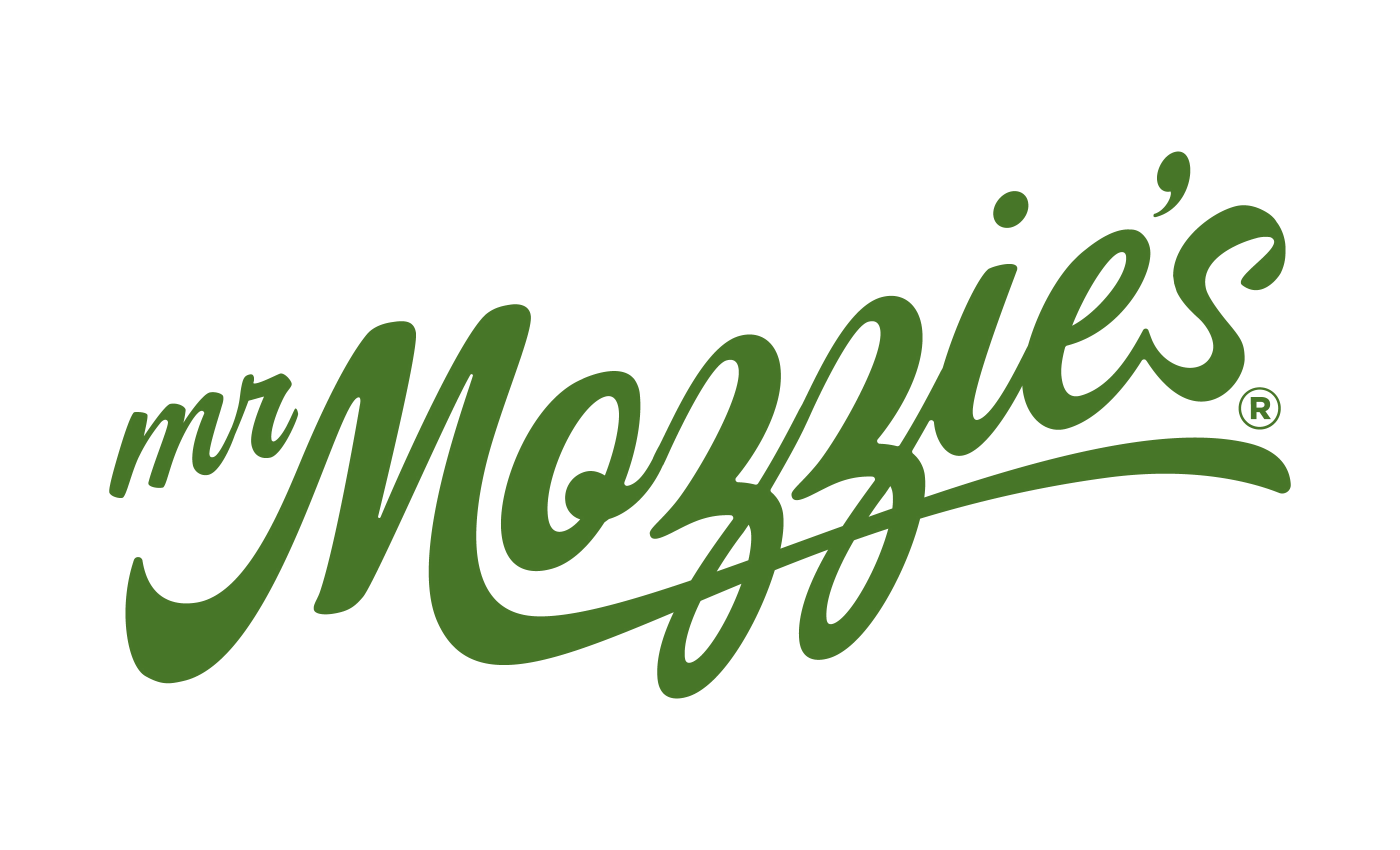 Mr Mozzie's Logo