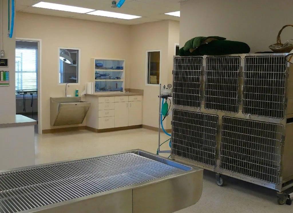 Hospitalization & Post-Operative Recovery Area