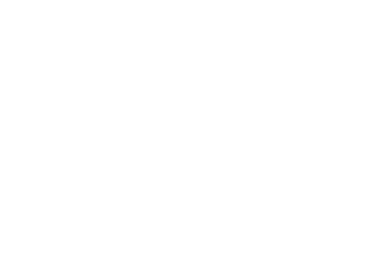 Any & All Electric Logo