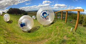 Zorbing in Rotorua