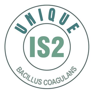 UBL Bacillus coagulans strain