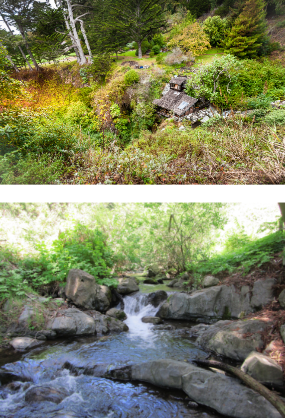 two photos stacked.  Top with grass and vegetation and the bottom image showcasing a shallow river and black rocks
