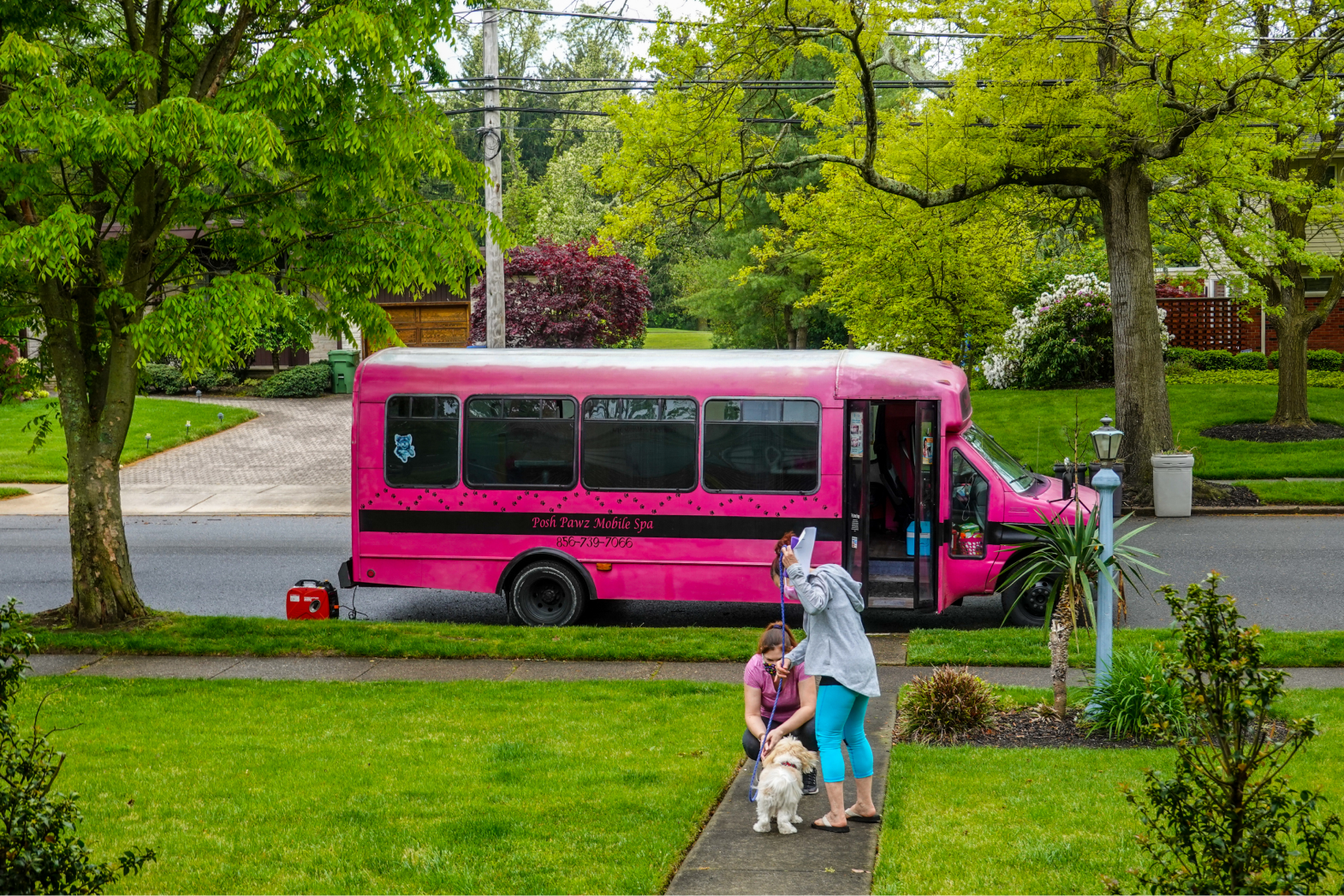 The pros and cons of hiring a mobile dog groomer