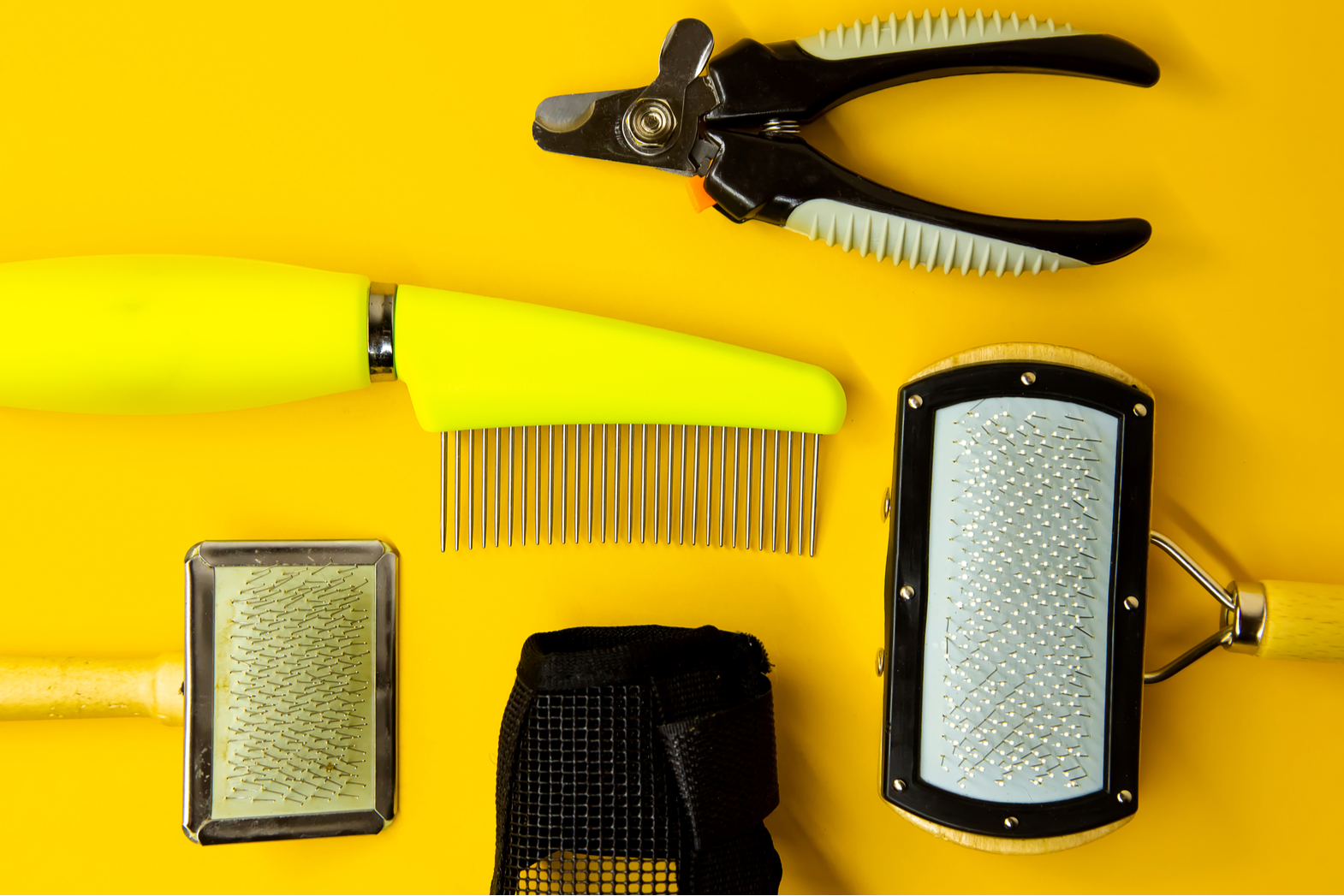 What are some must have tools for dog groomers?