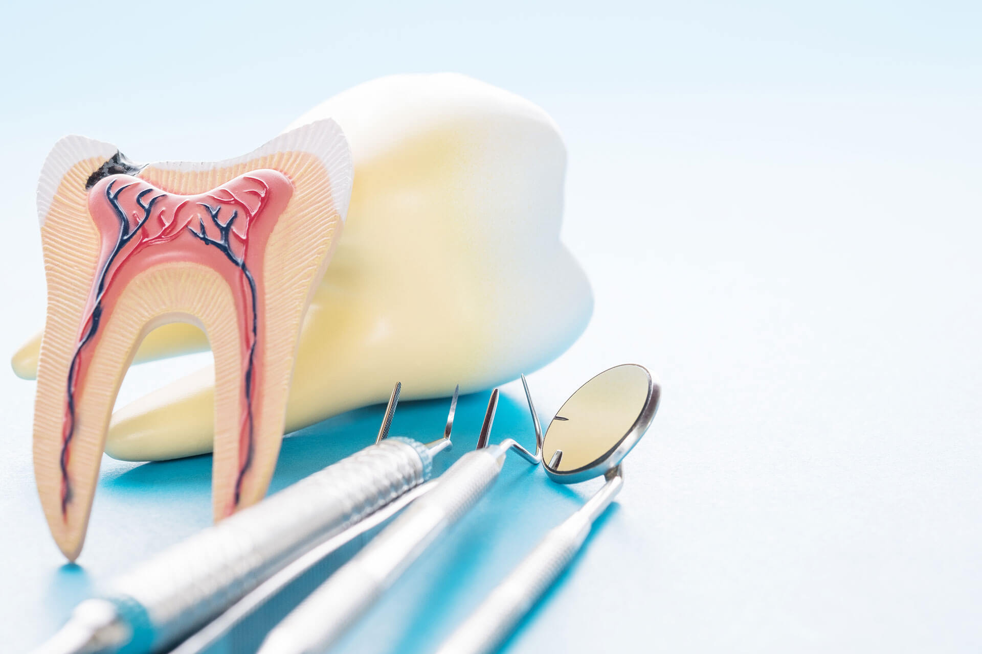 root canals in st augustine