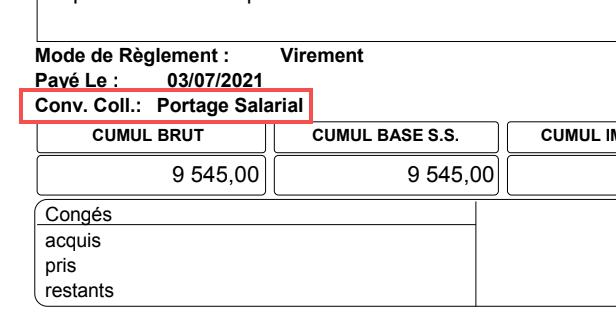 Capture d'écran du bulletin de paie d'un salarié porté