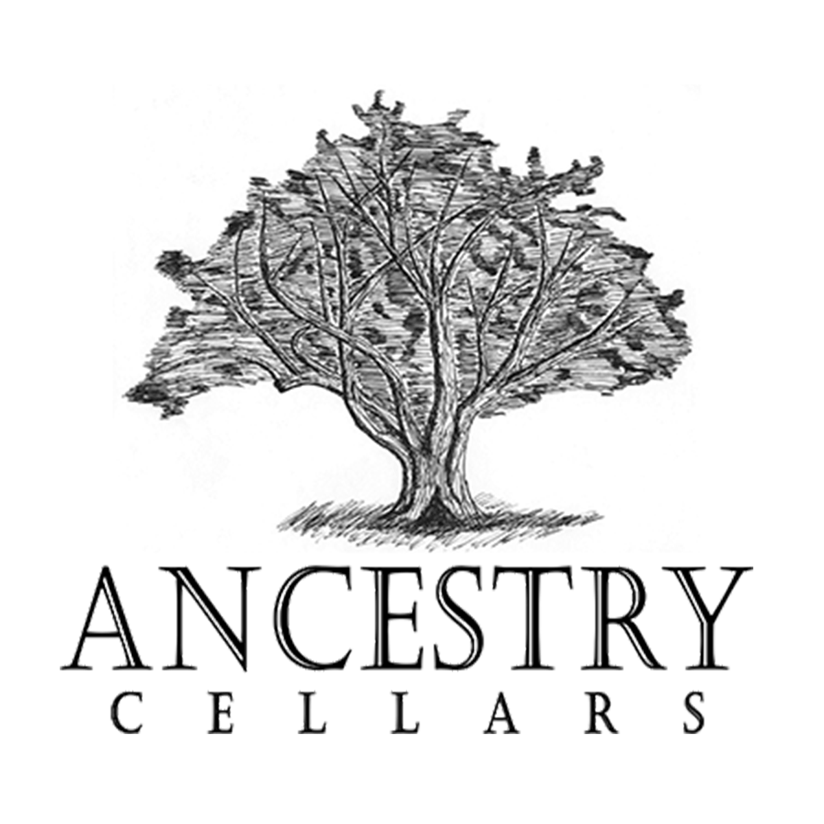 Ancestry Cellars logo
